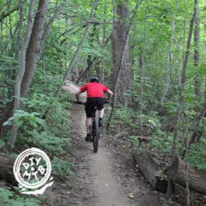 Mountain Bike Hybrid Tires